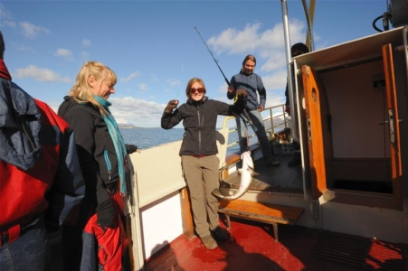 Whale Watching and Sea Angling in north Iceland
