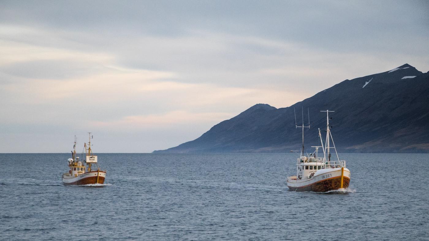 Two classic oak boats