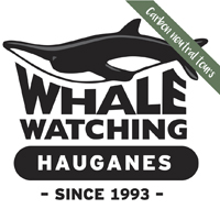 Whale Watching Carbon Neutral Tours