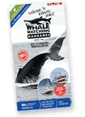 Whales.is brochure 2018